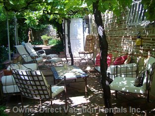 Shady Vines Seating Area