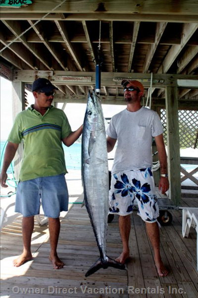 65 LB Wahoo Caught off Cayman Brac
