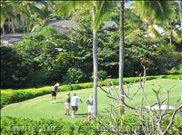 Watch the Golfers on the 11th Tee on the Kona Country Club Golf Course