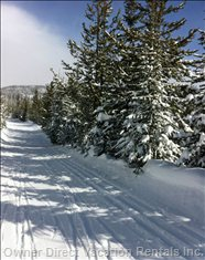 One of the many Beautiful Cross Country/Snowshoe Trails