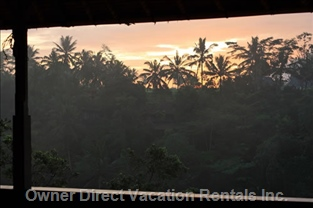 Tropical Sunrise from your Bed