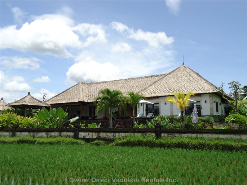 The Building and the Rice Paddies Area