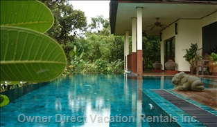 Gecko Villa, its Private Pool and Delicious Thai Food Await You..