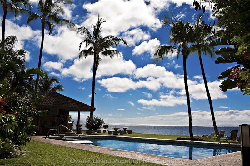 Swimming Pool at Hale Mahina. - Do Not Feel like Swimming at the Ocean, Or Maybe Just for a Change a little Dip into the Jacuzzi.