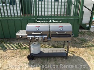 Bbq both Propane and Charcoal on this Special Unit