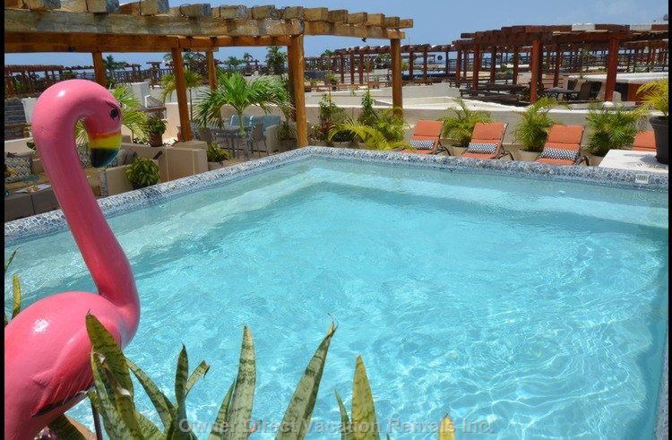 Your Private Rooftop Pool Located at Mamita's Beach