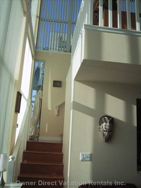 Interior Shot of Stairs