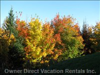 Autumn Colours Are Spectacular in Tremblant