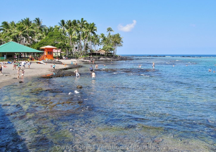 Kahaluu Beach 3mi South, Snorkeling with Turtles