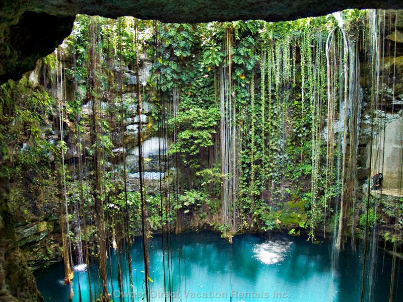 Multiple Cenotes in Proximity