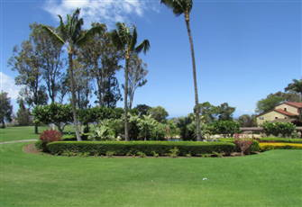 Relax in Paradise.  Kohala Condo in North West Hawaii