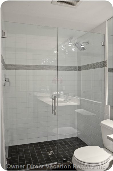 Completely Renovated Downstairs Bathroom