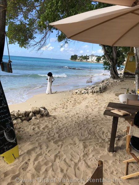 The most Beautiful Beach for the most Beautiful People :) La Cabane Restaurant/Beach Bar at Batts Rock.