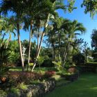 Set in Nearly Two Acres of Beautiful Tropical Gardens, There is Plenty of Space at Vistamar!