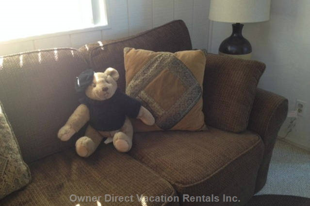 Bear Mascot on the Cozy Sofa. This is a Full Sized, Fold out Sofa Bed.