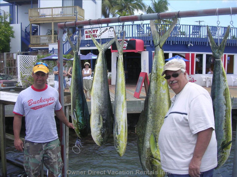 Fishing Charters May be Booked in Christiansted, Only 10 Minutes Away. I Say they Had a Good Day!