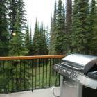 Bbq - Deck on Upper Level with Large Stainless Steel Bbq.