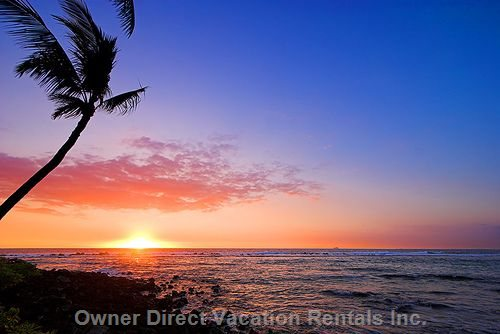 Vacation Rentals Hawaii USA #117316