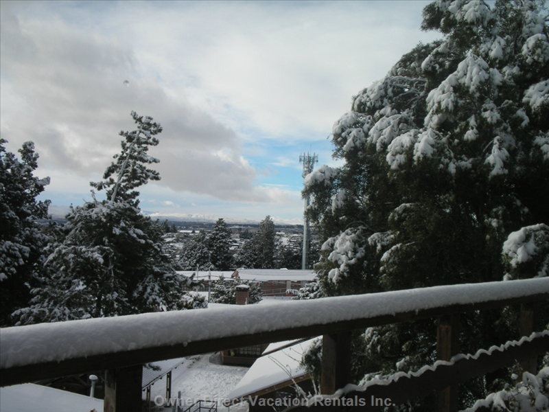 Winter View from Dining Room