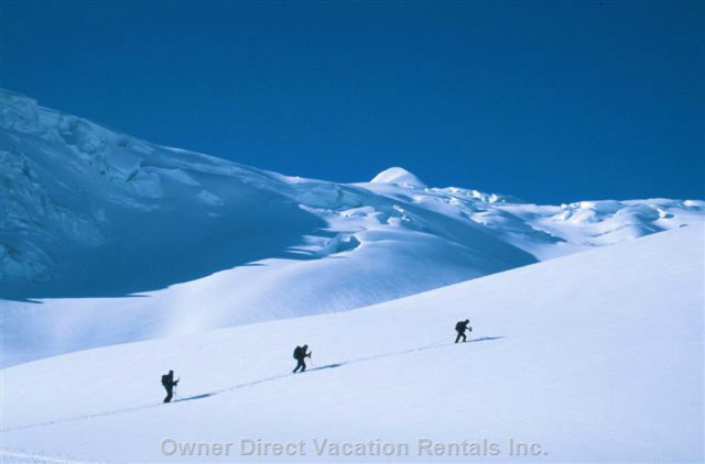 Unlimited Powder.... Back Country Randonee Skiing Nearby.  Rogers Pass Offers Unlimited Acres of off Piste Skiing.