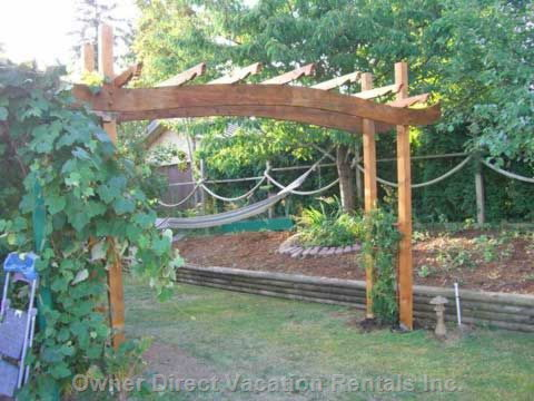 6 Grape Vines on the Property and a Hammock
