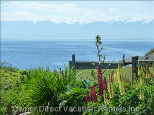 Olympic Mountains & the Salish Sea