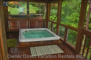 Hot Tub on Lanai off Master Bedroom