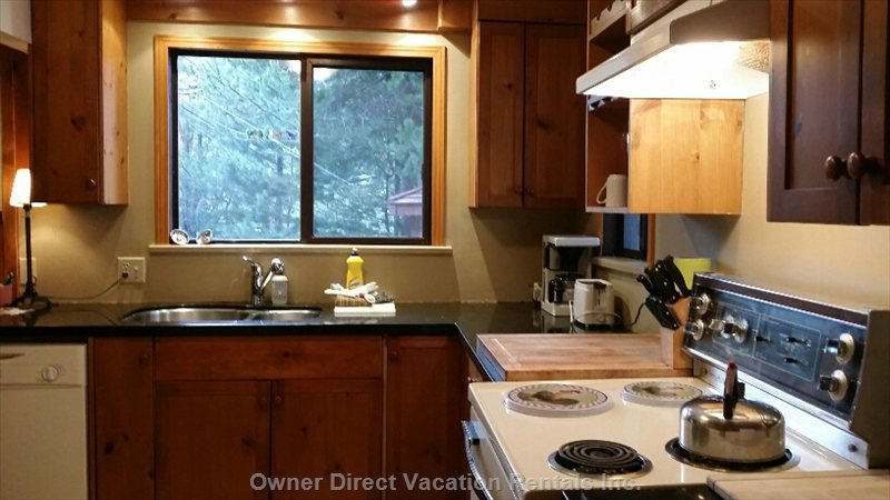 Lots of Windows in Kitchen and Living Area - Bright Suite.