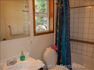 New Vanity and New Window in Bathroom with Tub and Shower.  Relax after a Hard Day Biking Or Skiing.