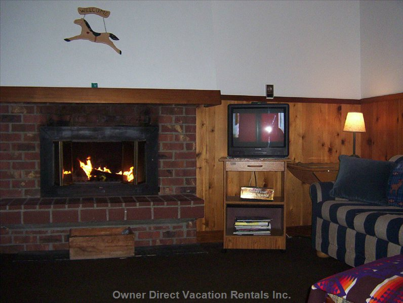 Wood Burning Fireplace with Logs Provided and Big TV/Cable