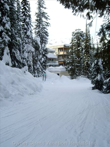 Ski Right into the Ski Locker (no Packing your Skis Or Boards Required!)
