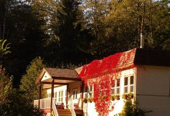 Group Lodging in Secluded Sayward Forest, North Vancouver Island