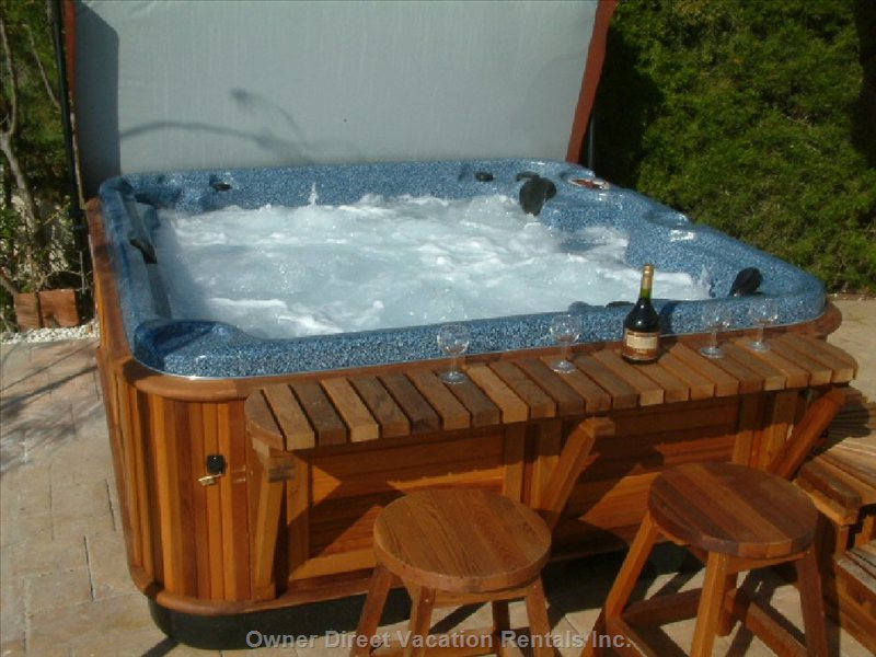 Artic Spa Hot Tub