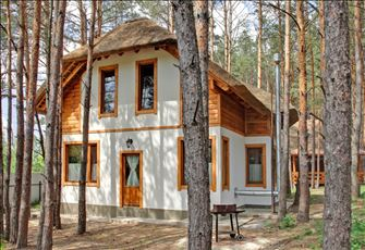 Wooden Cabins in the Pine Forest Nearby Kiev