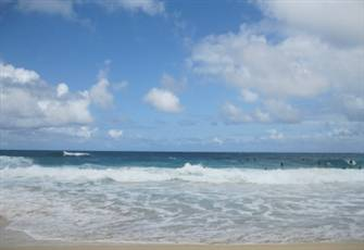 1 Bedroom -Hawaii 2 Min Walk to the Beach
