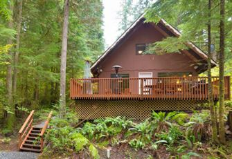 A Cozy Pet Friendly Cabin with a Free Standing Wood Stove and Outdoor Hot Tub.
