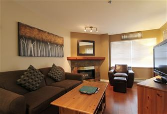 Beautifully Updated 1-Bedroom Condo with Kitchen and Fireplace