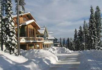 Cozy,Quiet 2-Bedroom with Home Theater, Infrared Sauna, great ski in/ ski out