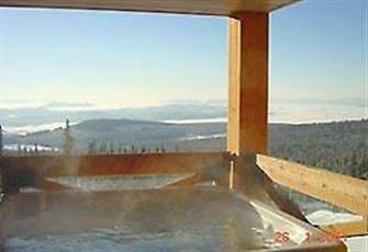 The Best Ski to your Door Access with Large Private Hot Tub and Stunning Views!