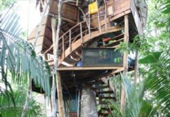 Modern Swiss Family  Tree House/sleeps2-8 Ocean Views near Beach/Dipping Pool