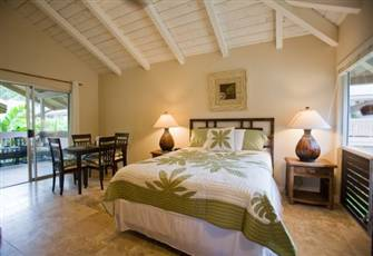 Lovely Sandpiper Studio - Sleeps 2 - DSL - Garden View, Princeville, Kauai