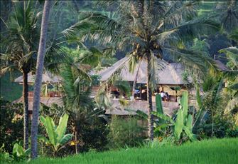 Villa in Ubud, Bali - Dramatic Vistas and Exceptional Service!