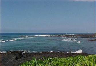 Oceanfront, Watch the Whales and Dolphins.  Affordable Oceanfront Condo