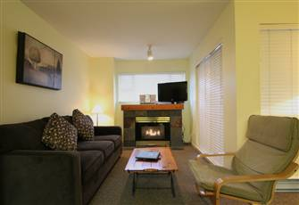 Bright and Welcoming Studio with Full Kitchen and Gas Fireplace