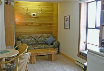 Shaw Direct Satellite TV ... Excellent ski-in and ski-out ... 'Timberland' Decor