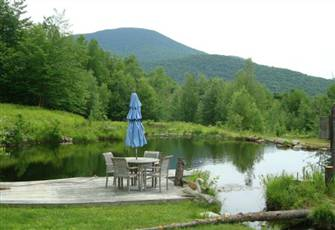 A Magical Cabin in the Woods on 37 Acres with a Swim Pond