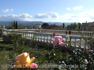 Garden with Private Pool View - the Property has a Private Pool with a Private Garden and many Flowers and Plants.