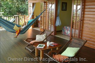 This is How to Chill in the Daintree