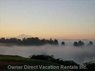 Mount Baker in the Fog
