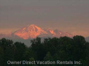 Evening Light on Mount Baker